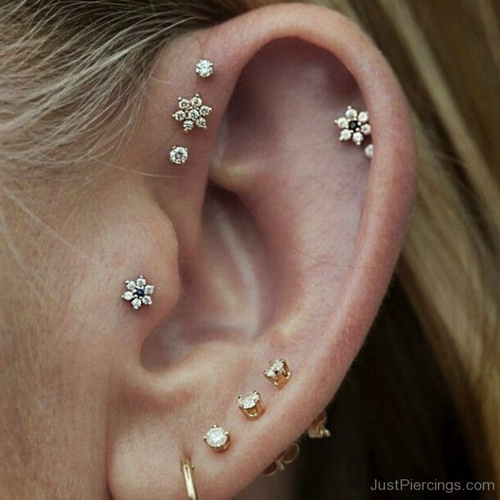 piercing jewelry tragus piercings page 40 2615